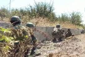 पंजाब के तरनतारन में अंतरराष्ट्रीय सीमा के पास दो पाकिस्तानी घुसपैठिये ढेर