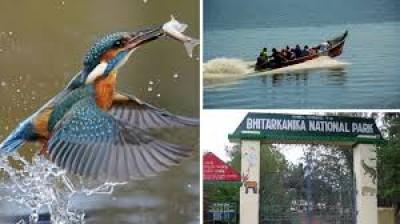 ओडिशा: भीतरकनिका राष्ट्रीय उद्यान पहुंचे हजारों प्रवासी पक्षी