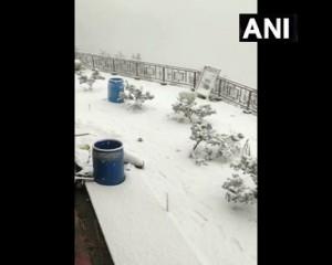 हिमाचल प्रदेशः शिमला में मंधोल गांव में हुई ताज़ा बर्फबारी के बाद चारों तरफ बर्फ की मोटी परत बिछ गई।