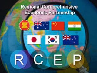 आरसीईपी से प्रतिस्पर्धा करनी है, तो भारत को शुल्क घटाने होंगे : यूएसआईएसपीएफ