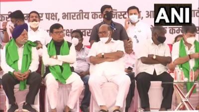 प्रमुख शरद पवार और महाराष्ट्र कांग्रेस प्रदेश अध्यक्ष बालासाहेब थोराट ने किसानों के प्रदर्शन में भाग