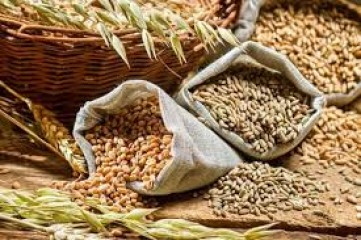 खाद्यान्न उत्पादन वर्ष 2020-21 में दो प्रतिशत बढ़कर 30 करोड़ रिकॉर्ड 33.4 लाख टन होगा : अग्रिम